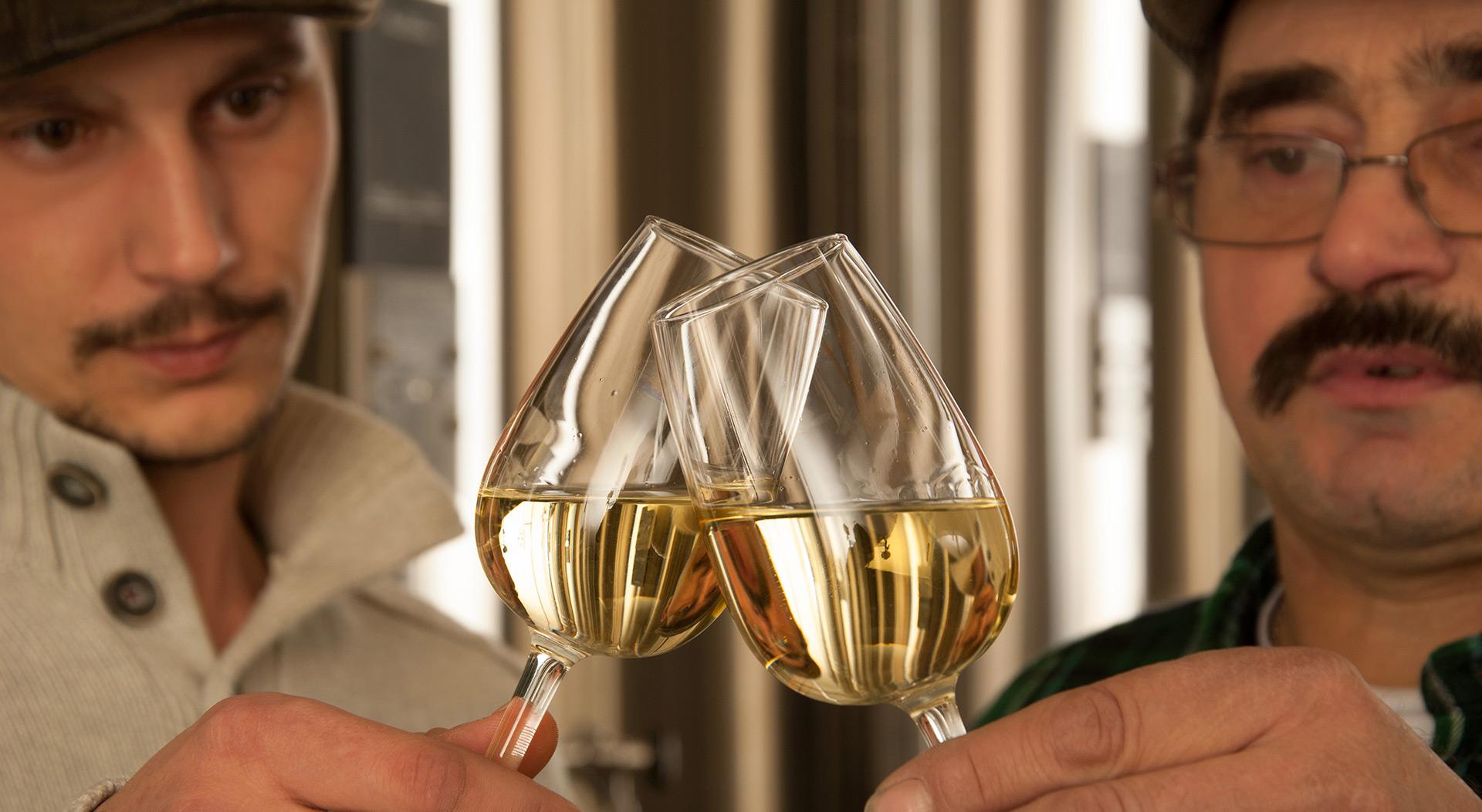 cadoles-chardonnay-vignerons-s5